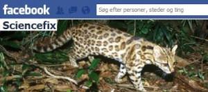 Dine venners posts på Facebook kan skade det billede, du forsøger at opbygge der. Grafik: ScienceFix