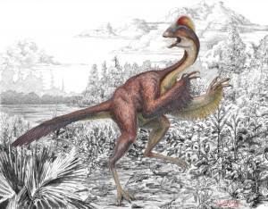 Dinosauren Anzu wyliei lignede en kylling fra helvede, mener forskerne, der fandt uhyret. Grafik: Mark Klingler, Carnegie Museum of Natural History