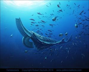 Dyret Tamisiocaris har forskerne regnet for et toprovdyr i det kambriske hav lige som andre anomalocaris dyr. Men nu viser den sig at have levet af smådyr, om den filtrerede ud af vandet. Grafik: Robert Nicholls
