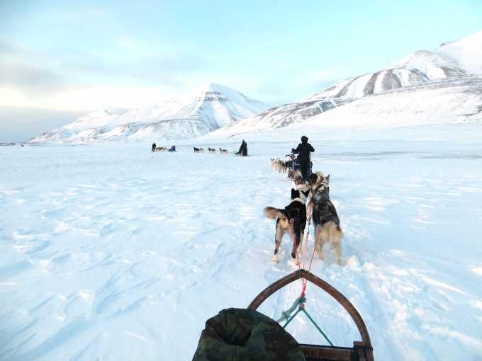 Med hundeslæde ud over en af Svalbards frosne fjorde.