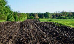 Conservation Agriculture CO2 klimaforandringer